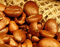 image of Light roast coffee beans